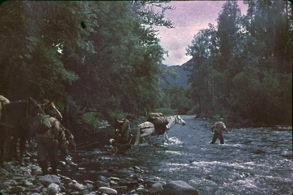kavycha-1991.jpg