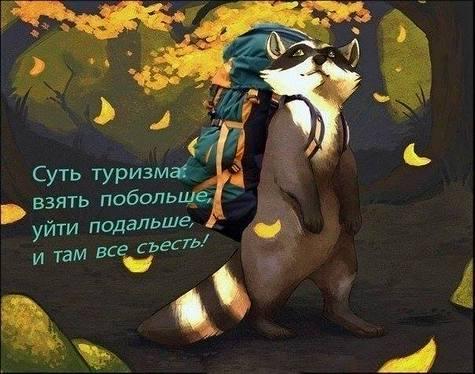 1239576.jpg